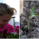 I´m Sprouting into an Earthsprout!