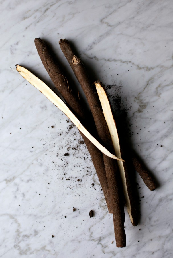 Salsify + Celeriac Soup or When Beige Foods Got Hot! www.Earthsprout.com